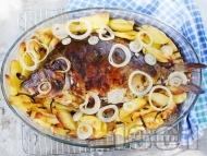 Пълнен шаран за Никулден с ориз върху картофи на фурна